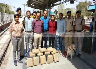 RPF men seize marijuana worth Rs 2 lakh at Nagpur station