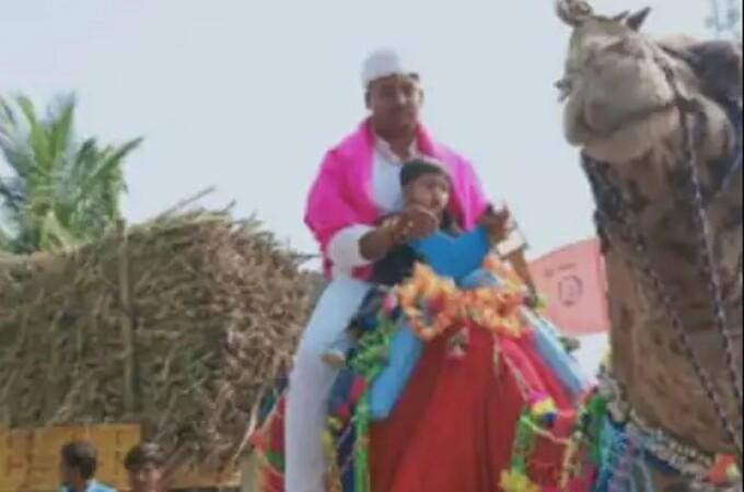 ना गाडी, ना घोडा चक्क उंटावर नवरदेवाची वरात; कारण वाचून तुम्हीही पडाल चाट