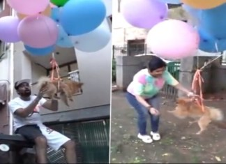 Delhi YouTuber arrested for making pet dog fly with hydrogen balloons