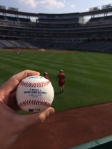 Danny Espinosa BP Home Run ball