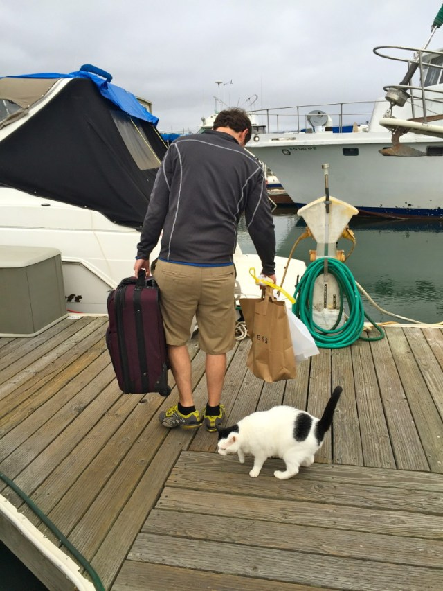 A unique Airbnb experience on a houseboat in Sausalito, just over the bay from San Francisco, California. // Bay Area Trips | Family Travel | Vacation Ideas