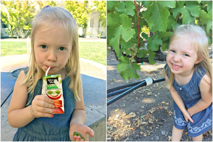 Our top tips for getting the most out of Napa and Sonoma wine country with kids! #napa #california #familytravel // Family Travel   Travel with Kids   US Travel   USA   United States   California   Napa Valley   Sonoma County   Best Wineries   Family Friendly Wine Tasting   Foodies