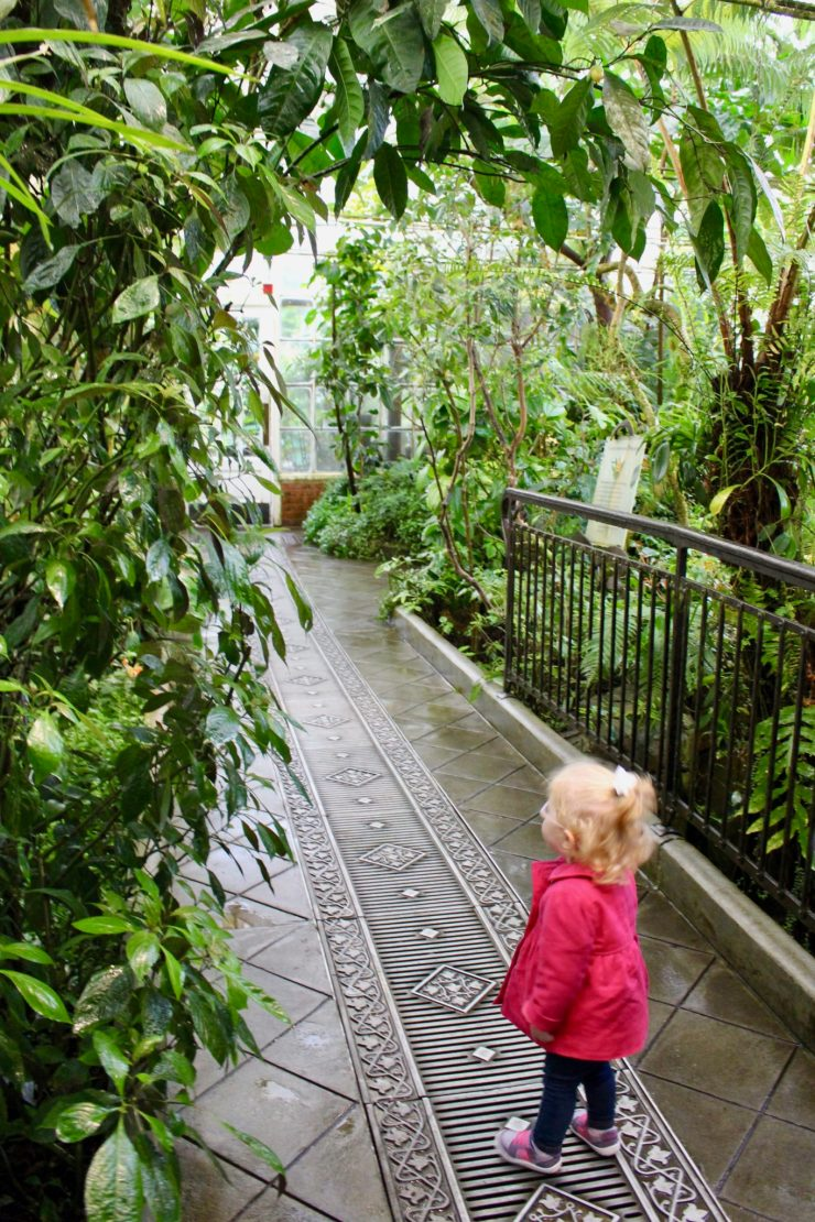 What to do in San Francisco when rainy weather ruins your day // Family Travel | Travel with Kids | Bay Area Trips
