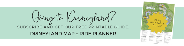 Free Disneyland Map and Ride Planner for the Perfect Day with Kids under 5 (Babies, Toddlers and Preschoolers!)