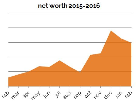 Net Worth Feb 2016 Zoomed In