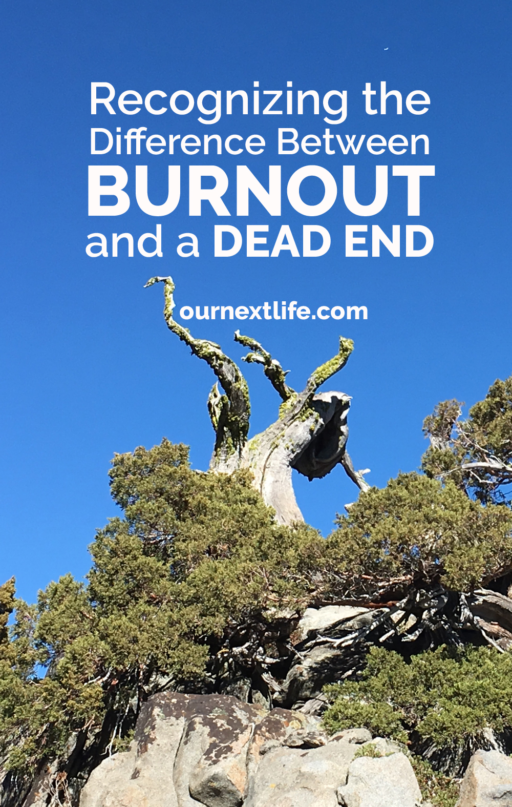 Recognizing the Difference Between Burnout and a Dead End // Reconnecting with