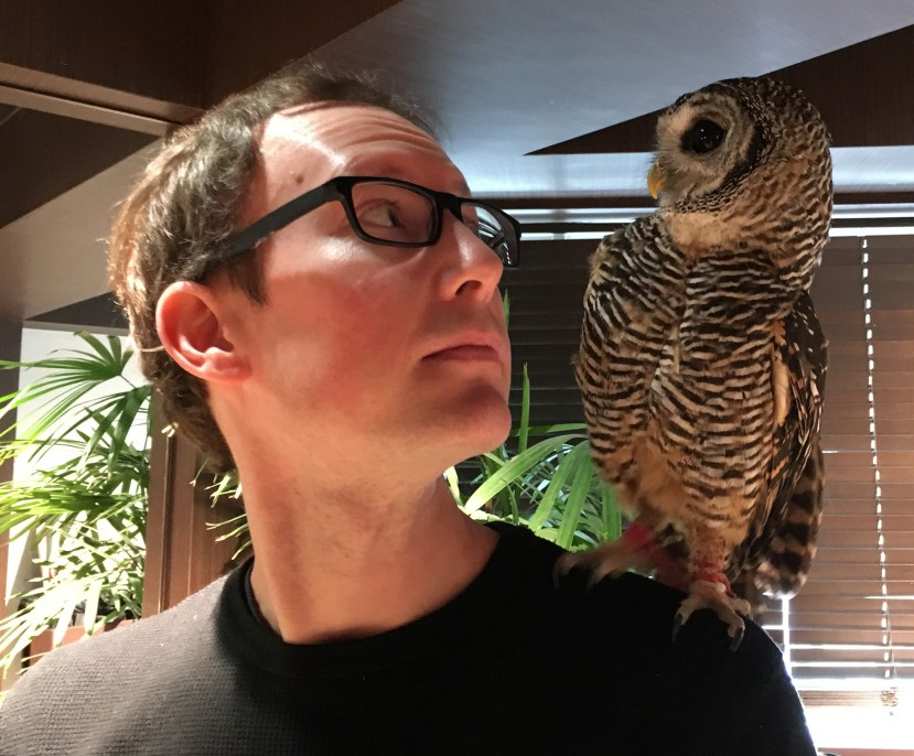 Mark at an owl cafe in Tokyo // Our Next Life