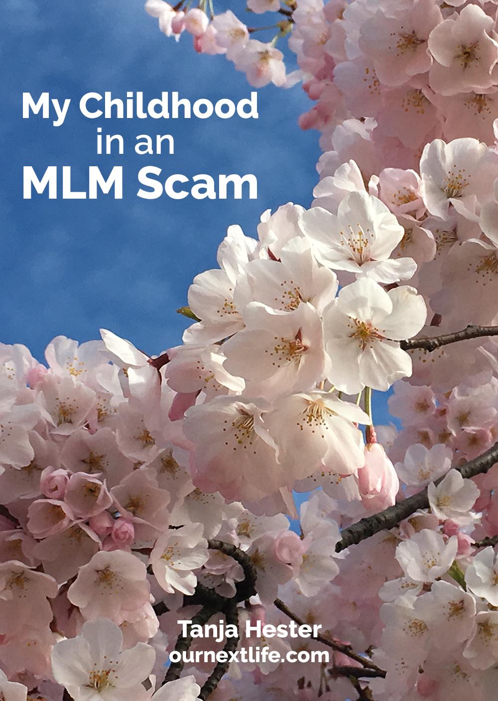 My childhood in a multilevel marketing scam // MLM, pyramid scheme, pyramid scam // Our Next Life by Tanja Hester // Work Optional, early retirement, financial independence, money