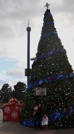 Giant Christmas Tree Sea World San Diego