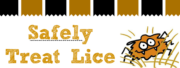 safely treat lice