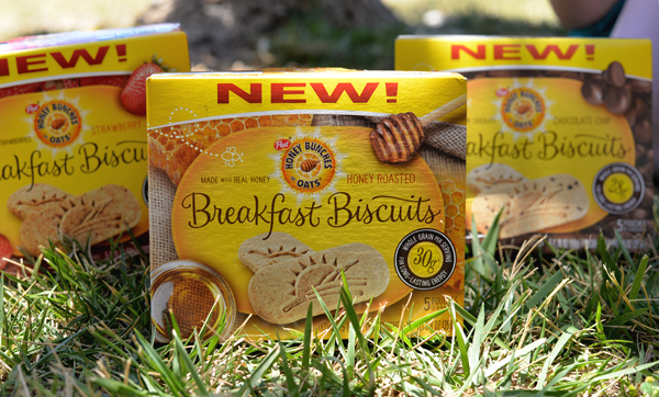Honey Bunches Of Oats Breakfast Biscuit