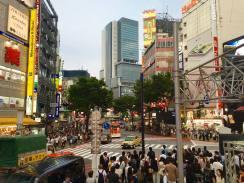 Shibuya8