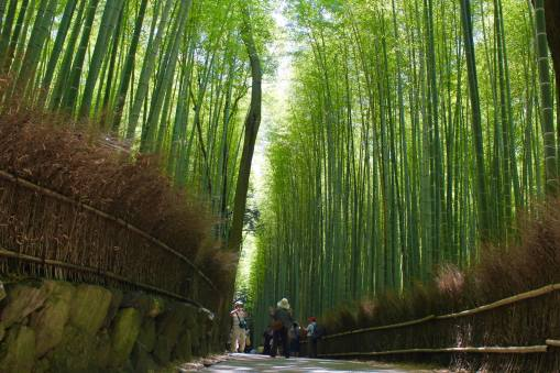 Arashiyama17