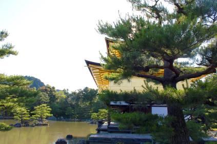 Kinkakuji Temple Kyoto6