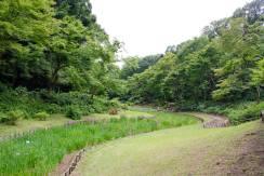 Meiji Shrine - Tokyo32
