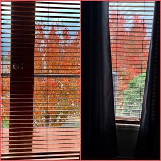 Autumn 201914