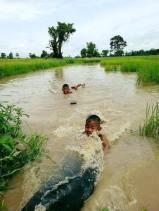Thai Village54