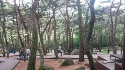 Jangboksan Sculpture Park 1