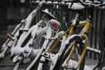 Snowy bike ride, anyone?