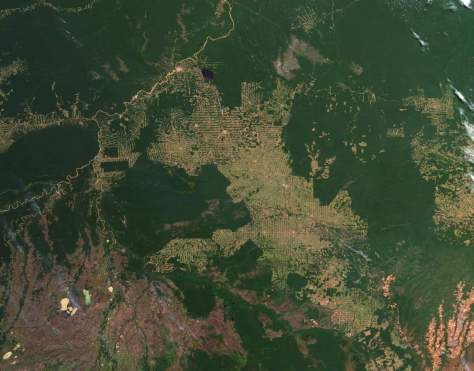 Amazon deforestation, July 18, 2012
