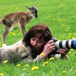 Photographers and Wild Animals: Unexpected Encounters