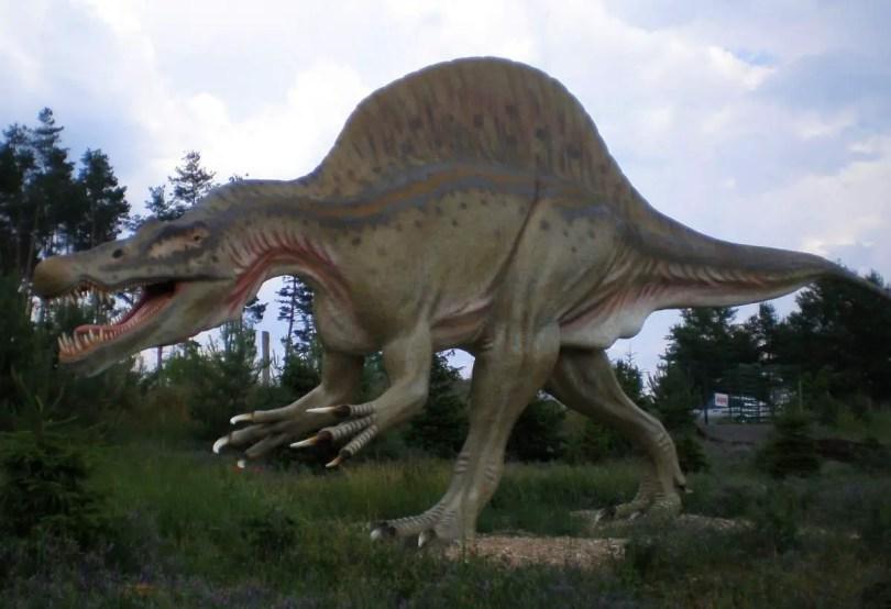 Spinosaurus, Tierpark-Germendorf