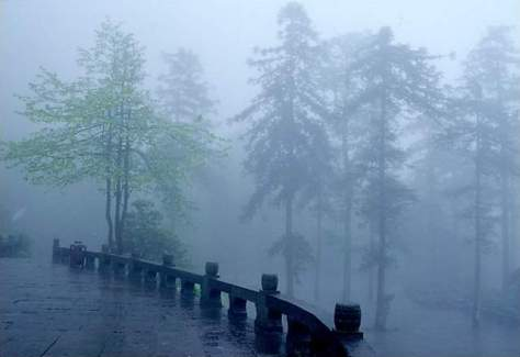 Rain on Mount Emei