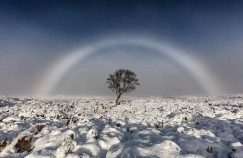 Rare Natural Phenomena - Fogbow