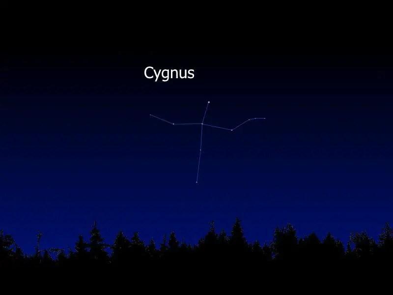 Cygnus in the Earth's sky
