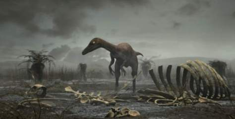 After the impact of dinosaur-killer asteroid