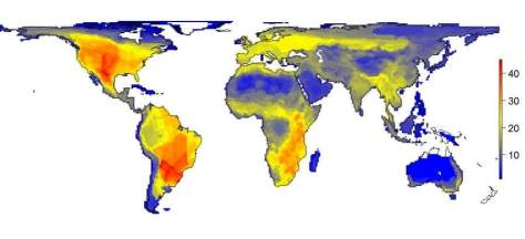 World - large animals diversity if humans not existed