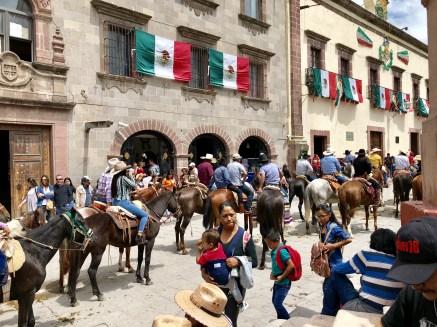 Horses come in to Centro