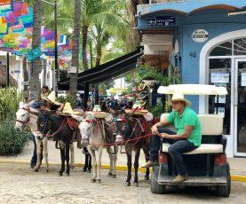 Donkeys or golf carts??