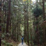 Zhangjiajie National Forest Park China Huangshi Village