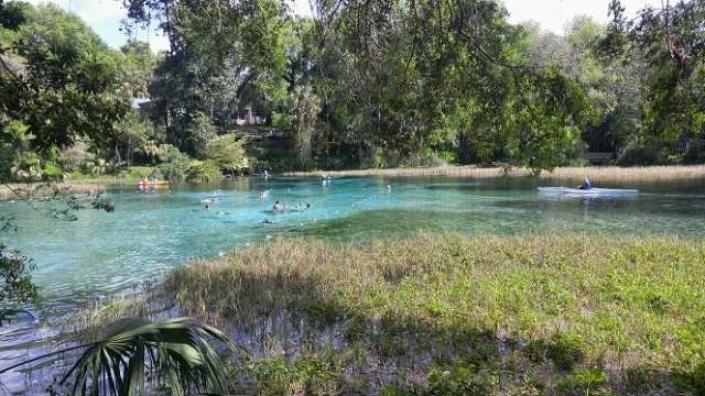 Things to do in Florida by most popular counties