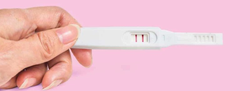 cbd fertility