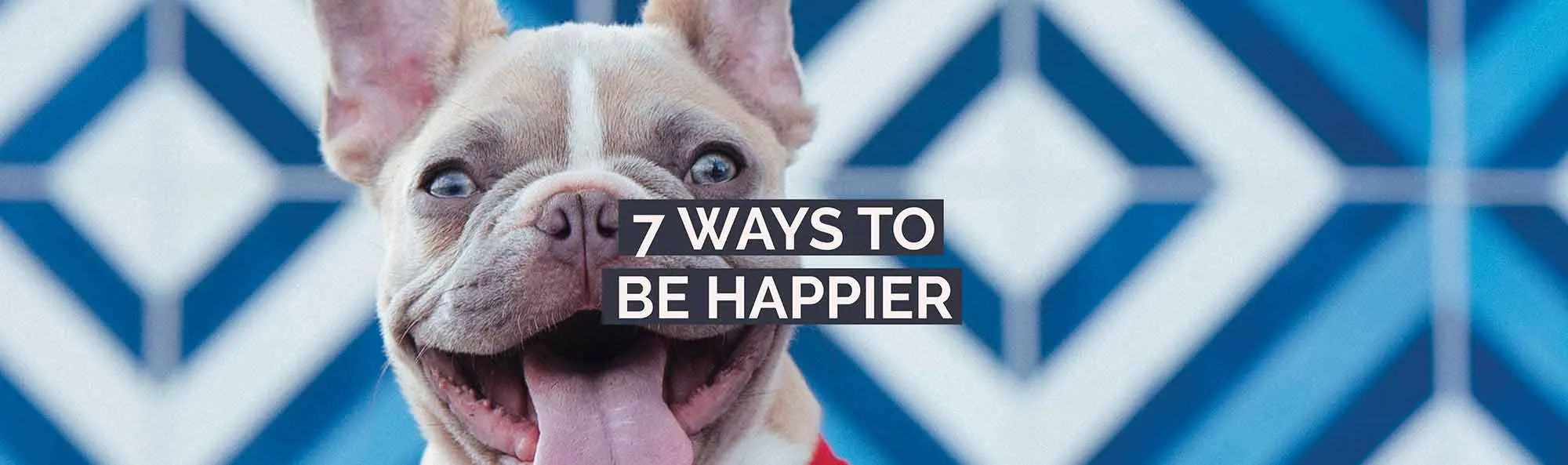 how to be happy 7 ways to be happier