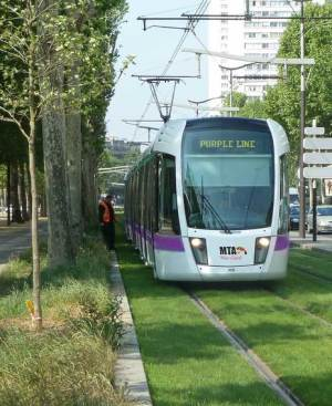 Purple Line tracks on grass