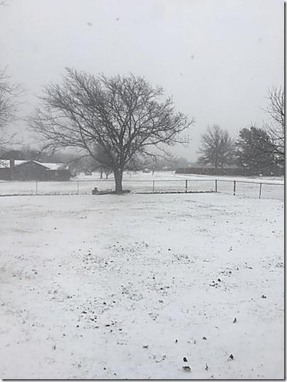 Paul's Valley Snow 1