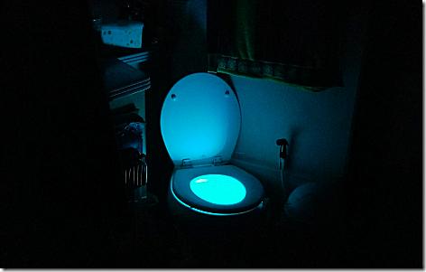 Toilet Glow Light