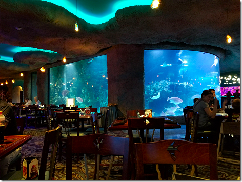 Kemah Aquarium 2
