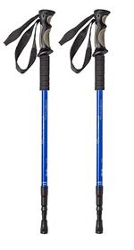 Cruise Walking Sticks