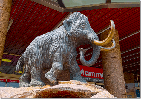 Mammut Mall Mammoth