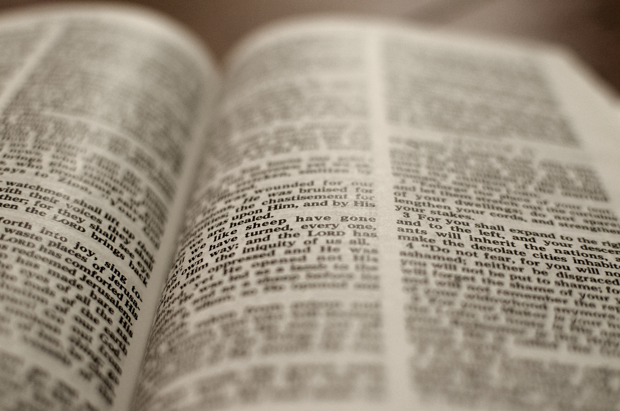 Open Bible -Close up
