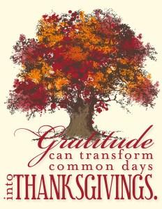 Thanksgiving Dinner @ Our Savior's Lutheran Church | San Diego | California | United States