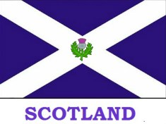 Scotland Flag with Thistle