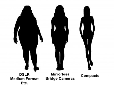 fat-and-thin1.jpg