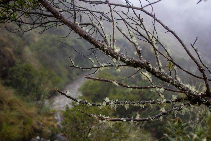 our simple adventure machu picchu inca trail-54