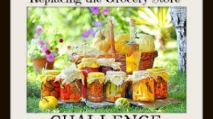 Replacing the Grocery Store Challenge Day 15 – Stretch Your Food for Two Weeks