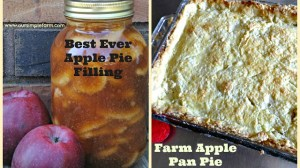 The Best Apple Pie Filling and Farm Apple Pan Pie